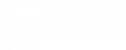 Ulhôa Starling Stancioli